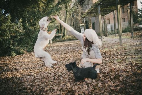 amore-per-il-proprio-cane-005