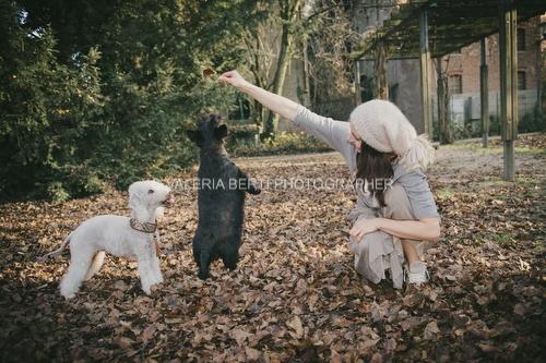 amore-per-il-proprio-cane-006