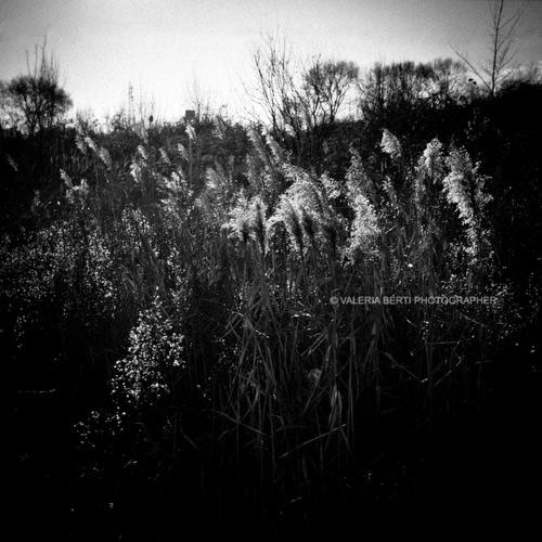 Fotografie in bianco e nero Fine Art
