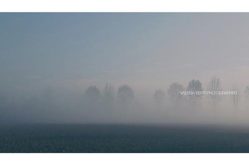 fotografie-di-padova-con-la-nebbia-003