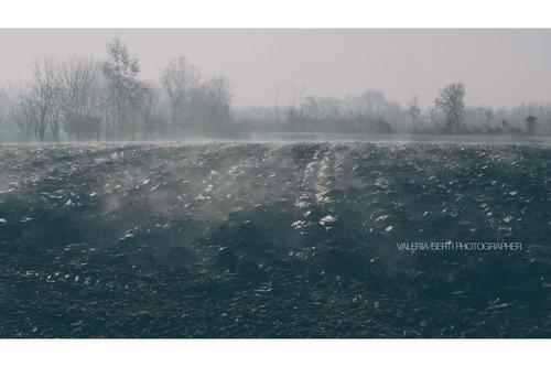 fotografie-di-padova-con-la-nebbia-006