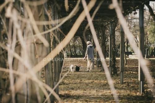 fotografo-ritratto-cani-gatti-padova-004