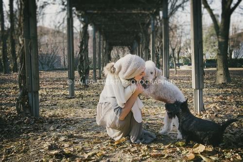 fotografo-ritratto-cani-gatti-padova-008