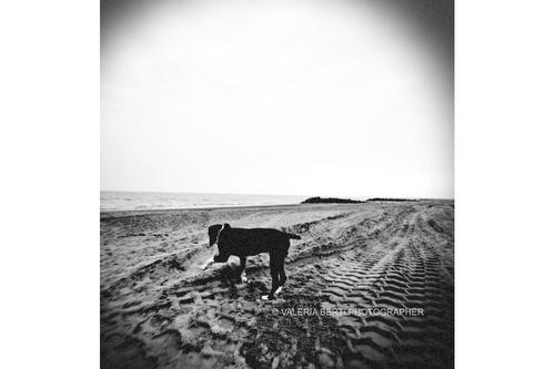 spiaggia-fine-art-padova-002