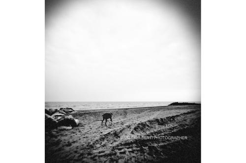 spiaggia-fine-art-padova-006