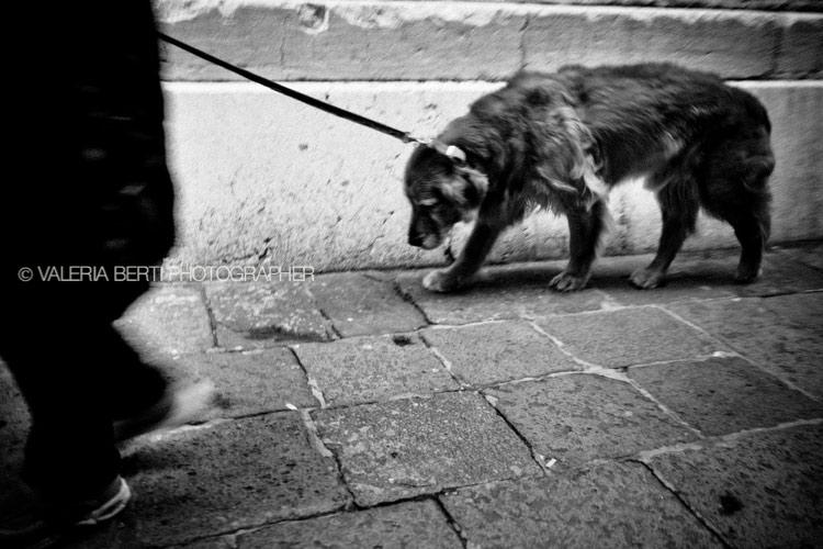 street-photography-venezia-0001