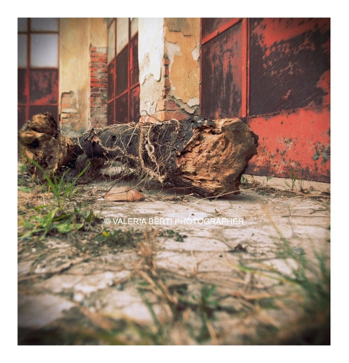 urban-vision-fotografo-padova-007