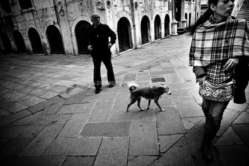 cani-street-photography-006