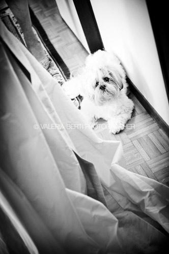 fotografo-matrimonio-padova-abano-terme-007