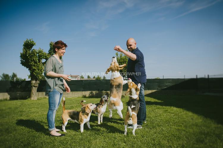 ritratti-con-beagle-004