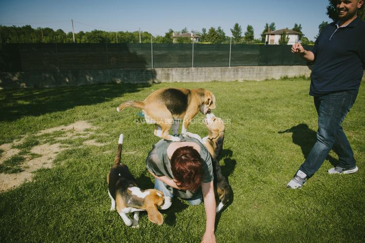 ritratti-con-beagle-005