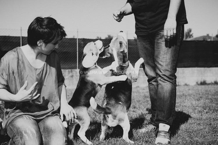 ritratti-con-beagle-006